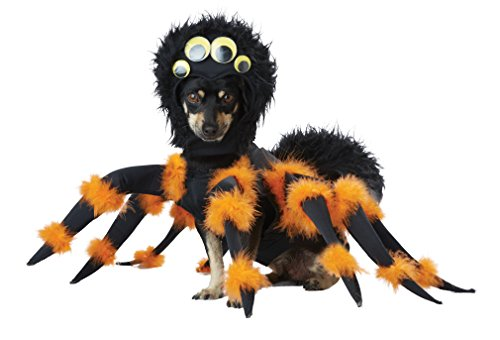 California Costumes pet20149Spider Pup Dog Kostüm, groß