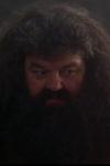 Hagrid | Foto © WarnerBros.com